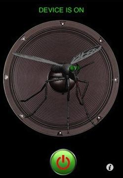 moustique-20090525-094022